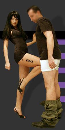 FEMA knee